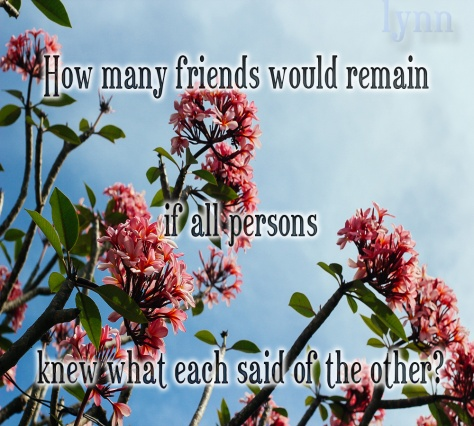 How Many Friends....